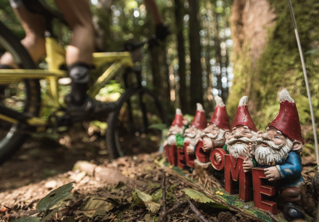 Trail Gnomes, the night riders worst enemy-gnomes.jpg