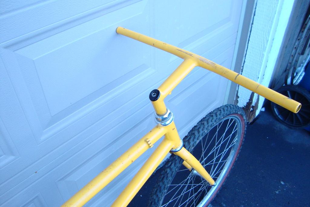 Hi newbie here, need info on mystery bike....-goat4.jpg