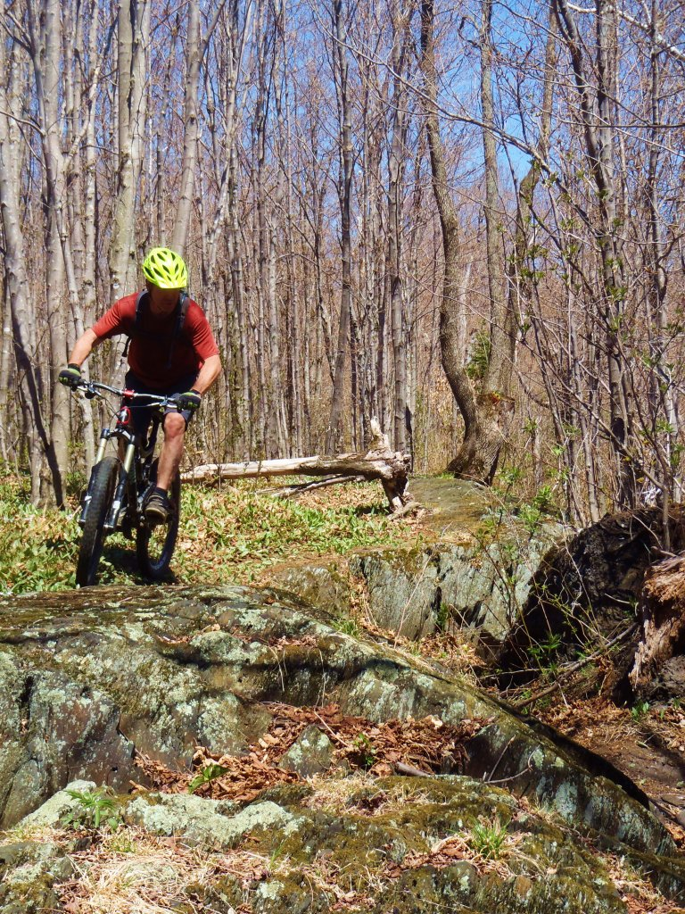 Riding in New England picture thread-goatdwight1.jpg