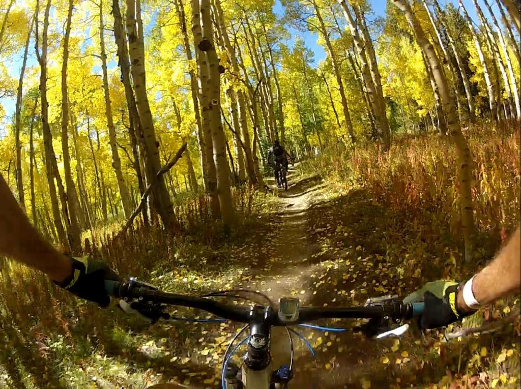 What did you do FOR your bike today??-golden-bars-pb.jpg
