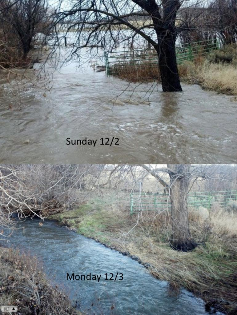 How was your commute today?-goldruncreek.jpg