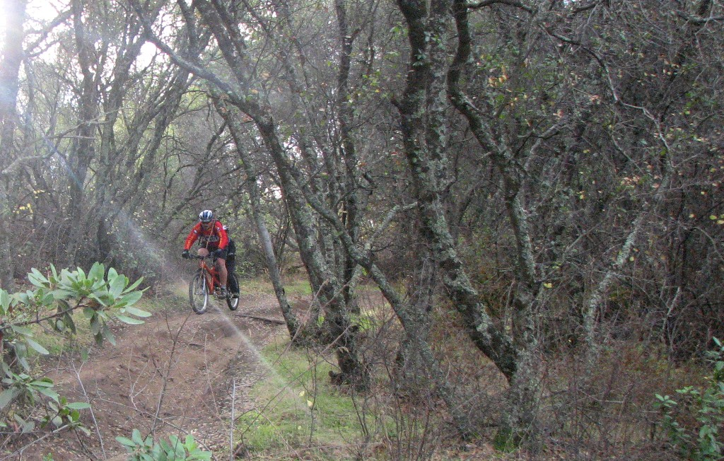Picture Thread 2010-gonzo-tandem-trail.jpg