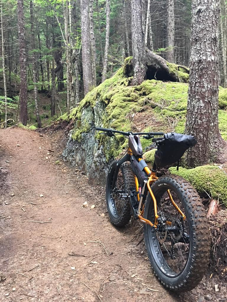 Daily fatbike pic thread-gooseriver2.jpg