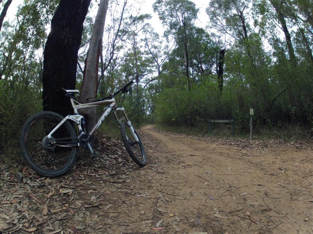 Bike + trail marker pics-gopr0201-large-.jpg