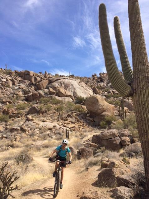 A Critique of the new trails at Brown's Ranch and Pima and Dynamite (and of myself)-granite-mtn.jpg