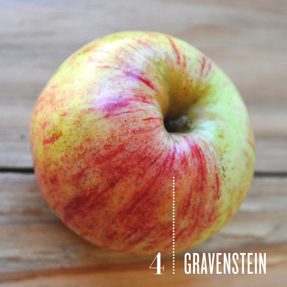 Vegetarian and Vegan Passion-gravenstein_0.jpg