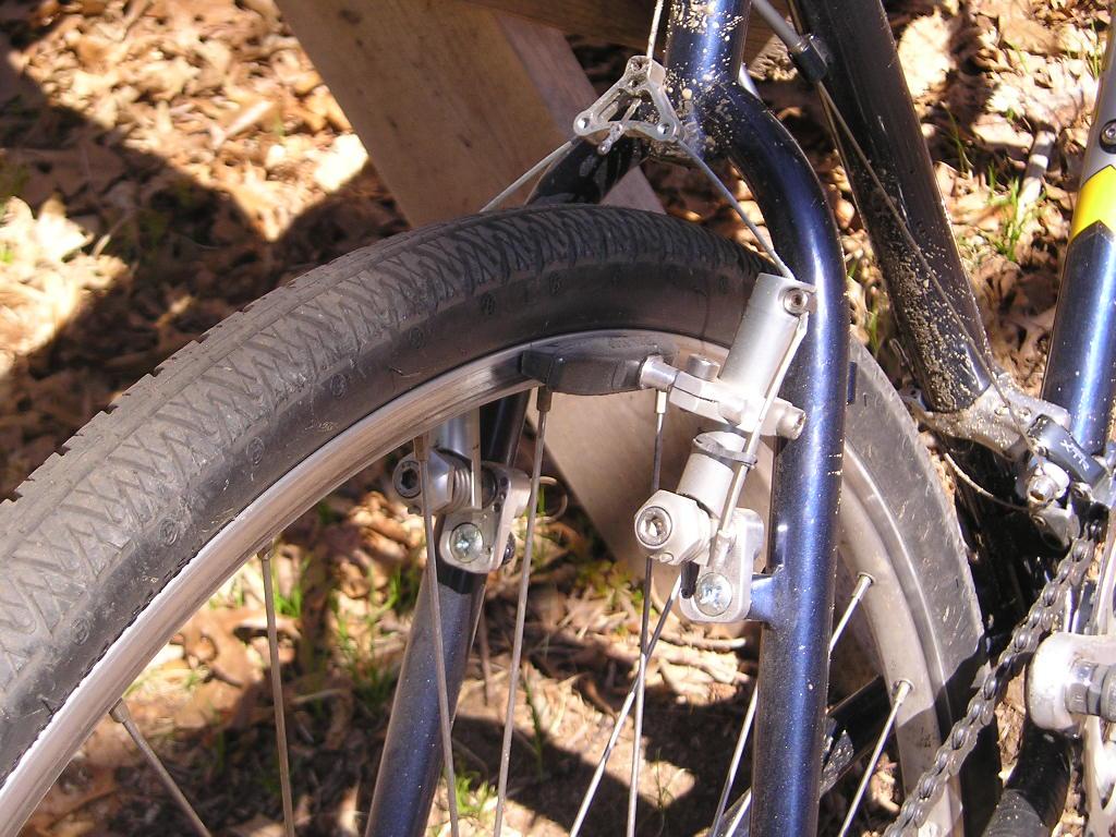 Winter project done: Bontrager race-cx-explorer-frankenbike-gravtrail.jpg
