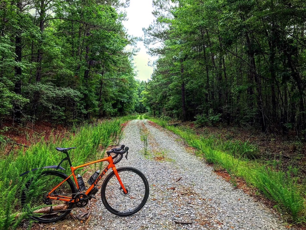 Post Your Gravel Bike Pictures-greenwood1.jpg