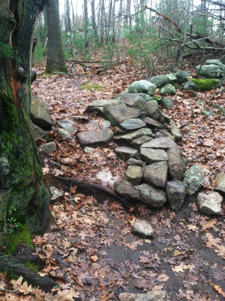 trail conditions-greenwood1.jpg