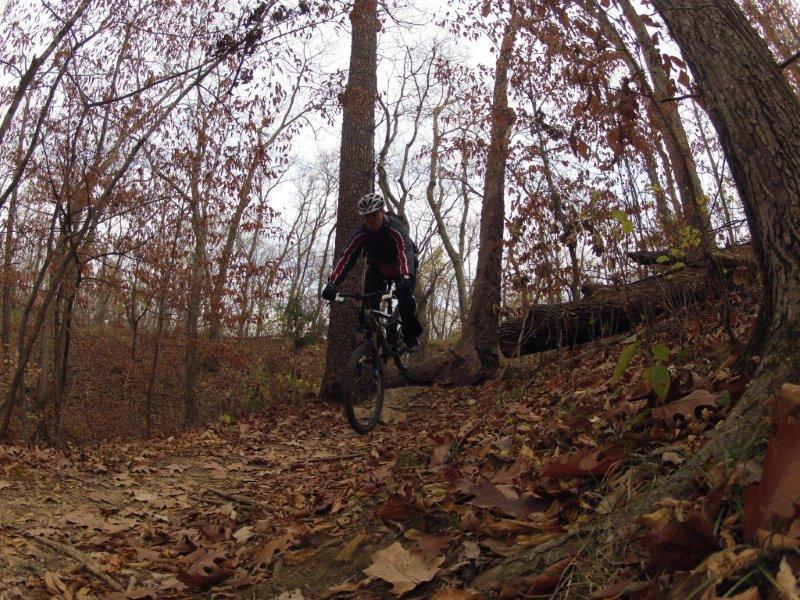 Sick GoPro/Contour pictures (Mountain Biking)-gregtree5.jpg