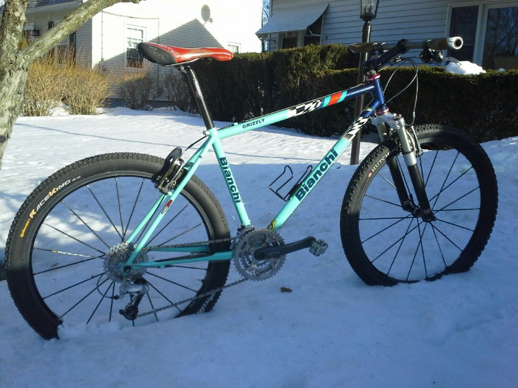 Vintage Bianchi picture thread-grizzly.jpg
