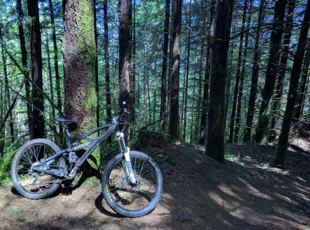 Limits to an Enduro bike?-growlers-7-17.jpg