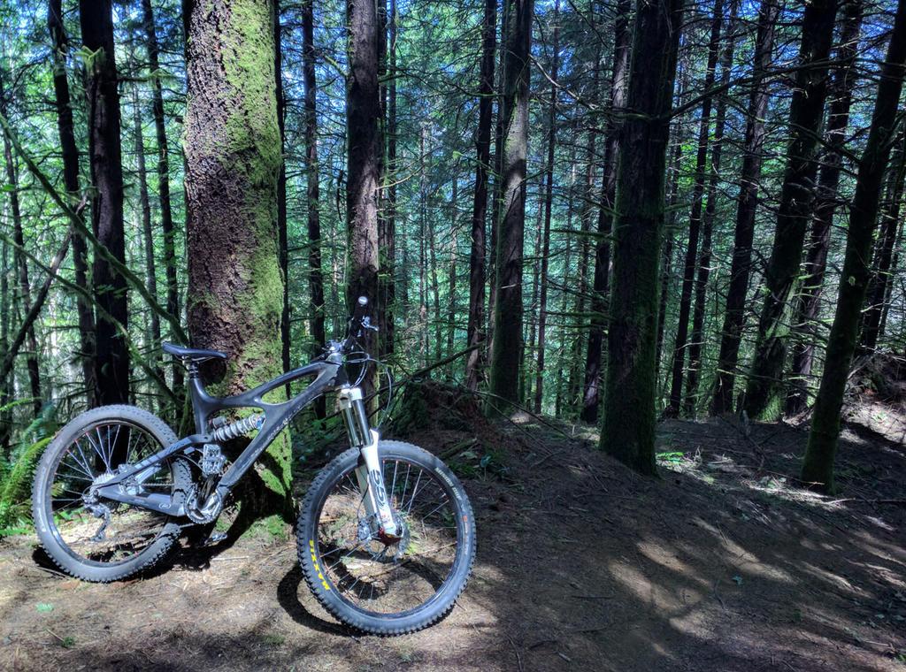 Limits to an Enduro bike?-growlers-7-17.jpg