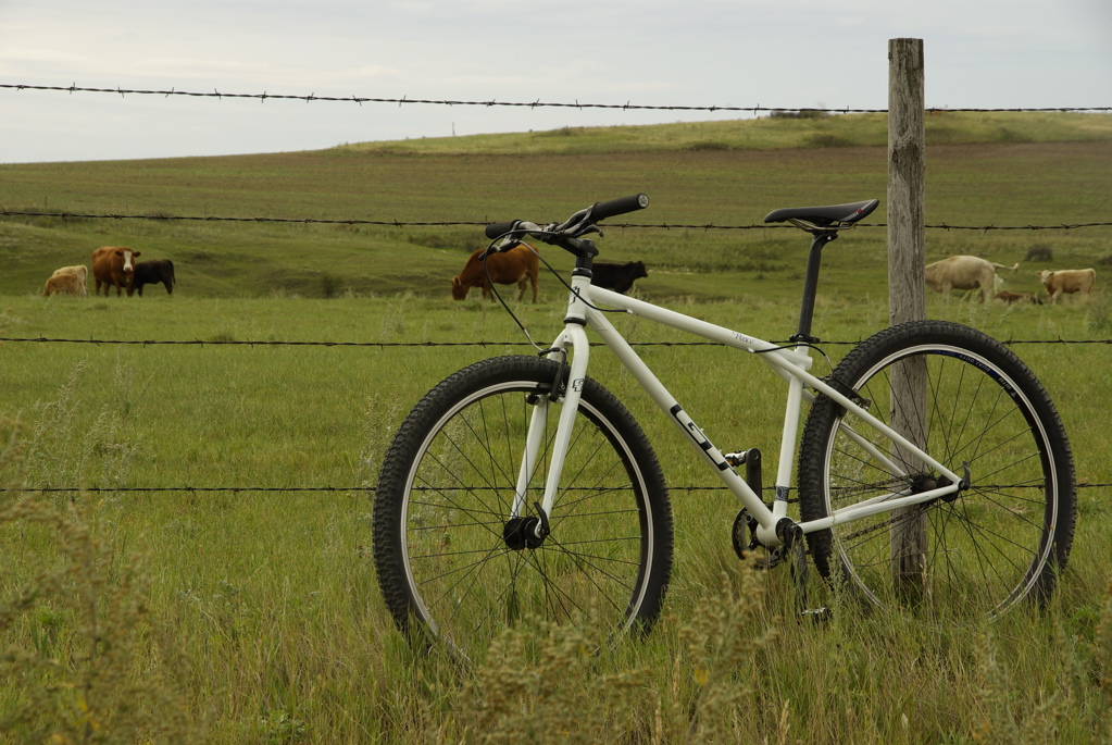 GT Peace 9r 29er Prairie Bike