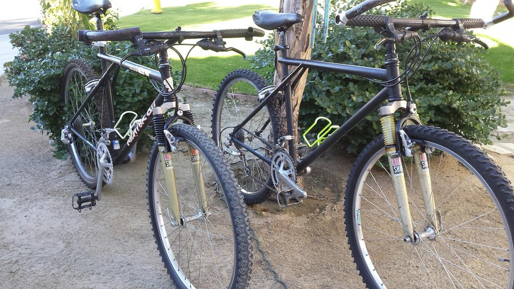 Early 90's Specialized Stumpjumper - replacing the fork?-gt-richter-2.jpg