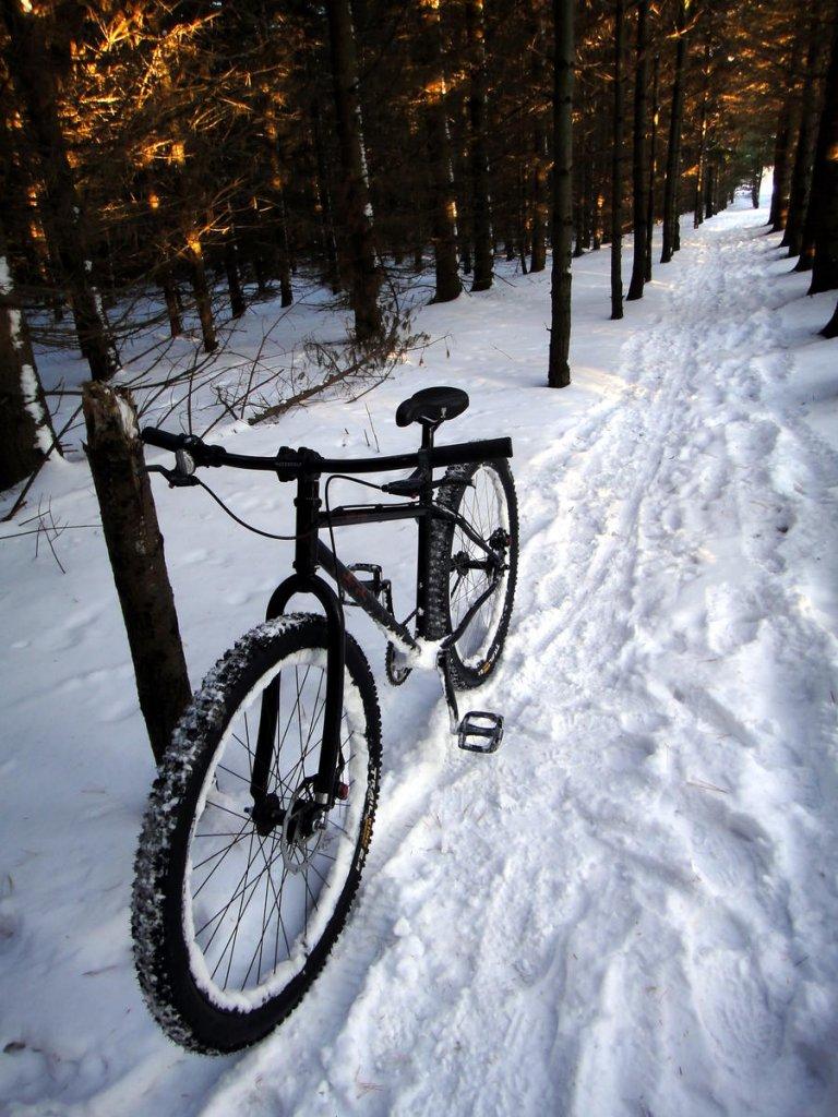 Totally Unofficial Snow Biking 2014/15 Thread-guelph_lake-snow_biking-112114-05.jpg