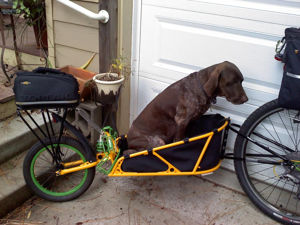 Carrying dogs longtail possible or suitable trailer better?-gunner-trailer.jpg