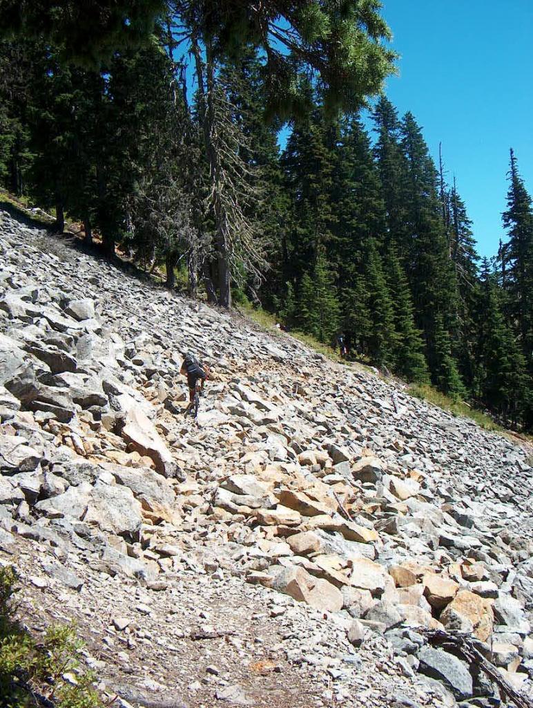 Trail Pics-gunsightscree.jpg