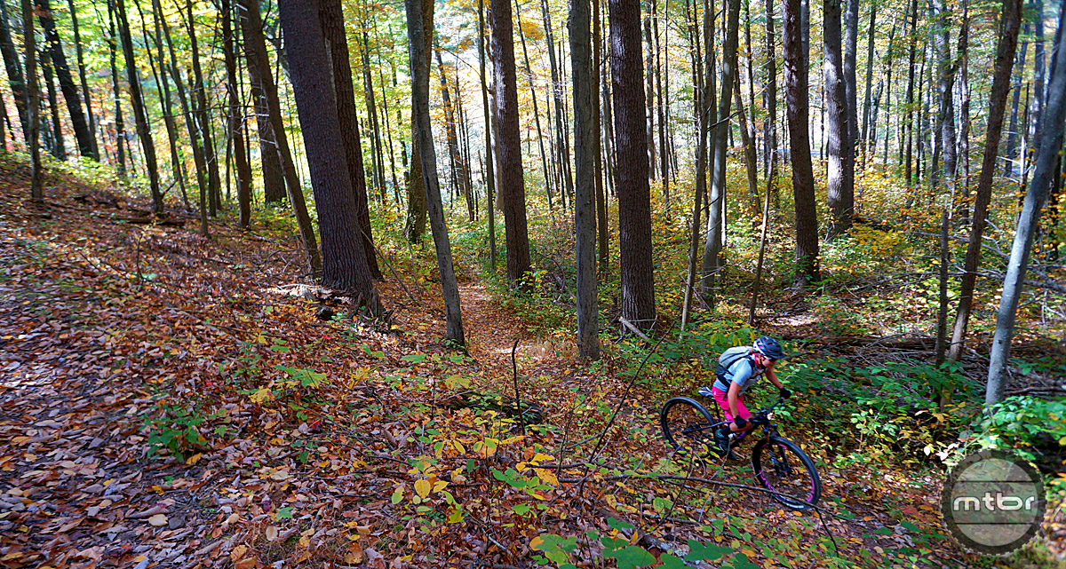 Miles and miles of trails meander through the Shenandoah Mountains. Whether you prefer rocky and technical or smooth and flowy, there is plenty of variety to keep you and your friends happy.