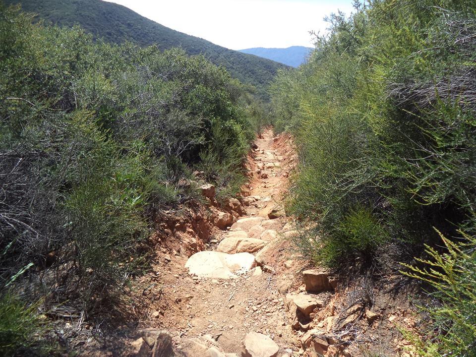 horn canyon: Ojai-h2.jpg