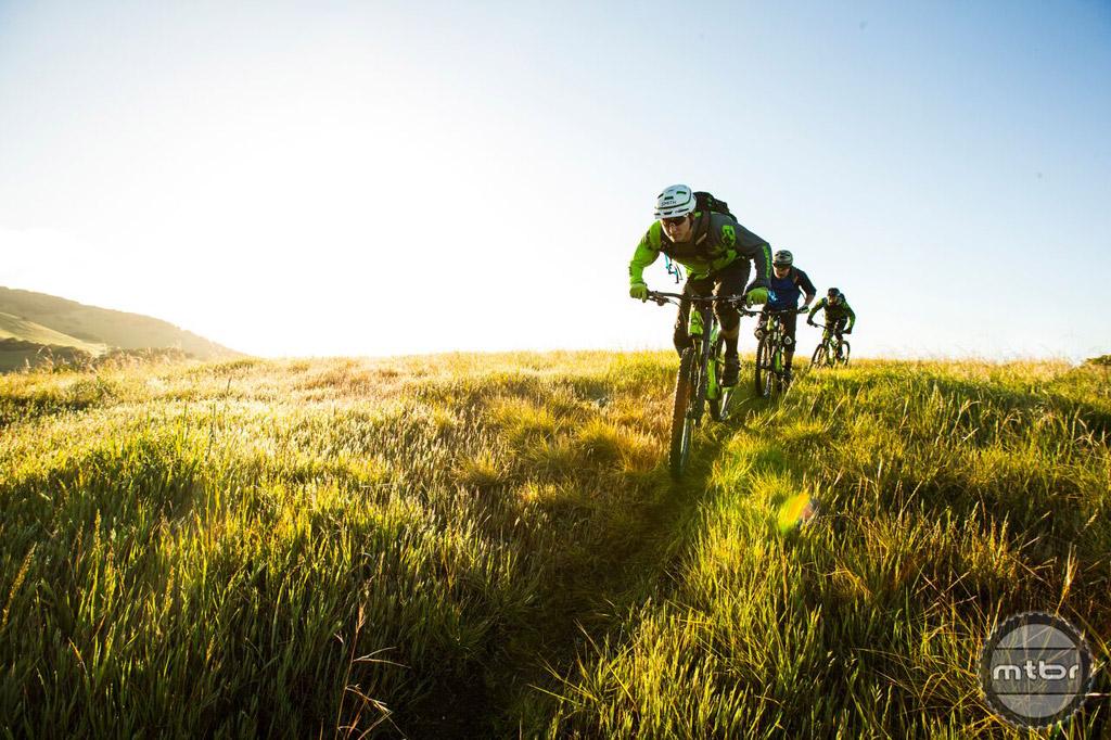 Habit - riders in action