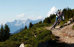Hacklberg_Trail