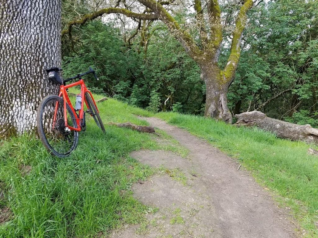 Post Your Gravel Bike Pictures-hakka.jpg