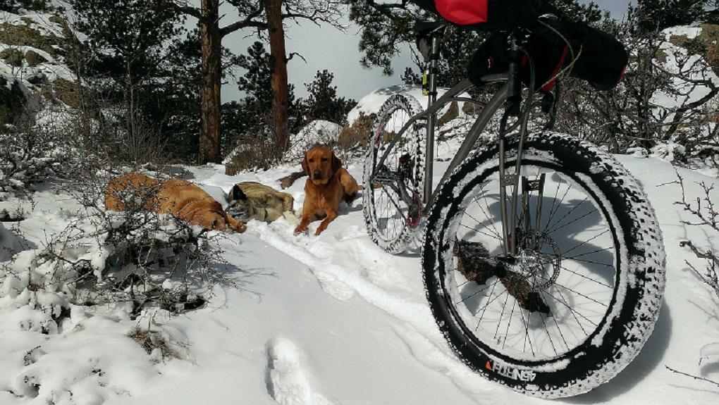 Daily fatbike pic thread-halffat-resize.jpg