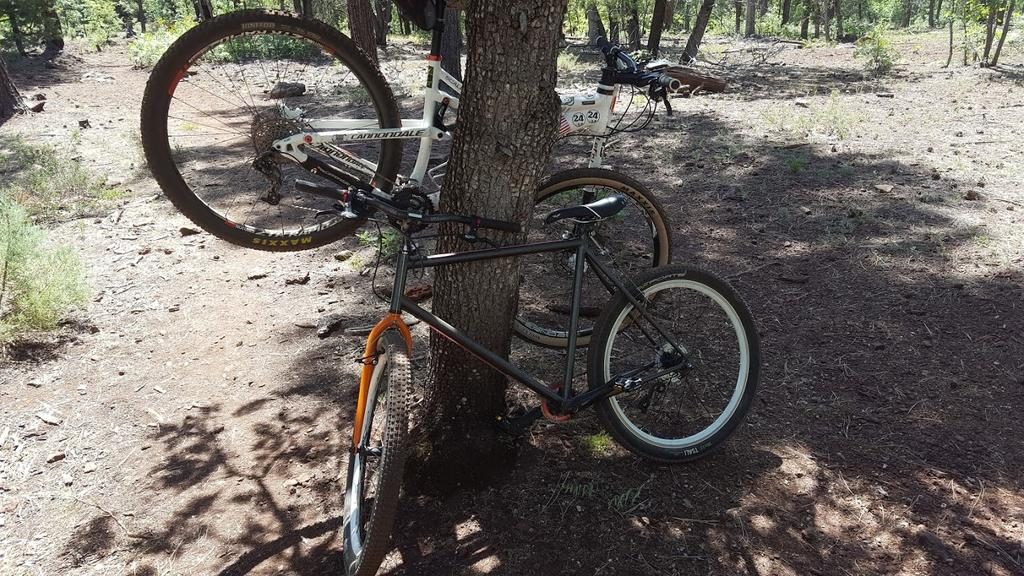 Show us a picture of your 26er MTB that you still use on the trails-hardrock.jpg
