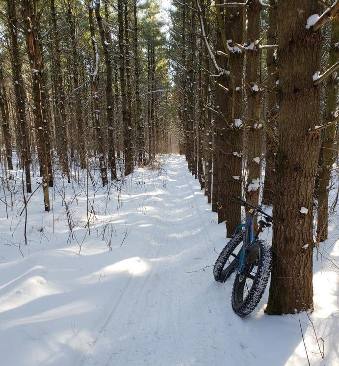 Fat Biking and health-hardwood-hills.jpg