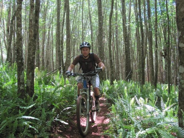 Mtn Biking on Maui-hawaii-065.jpg