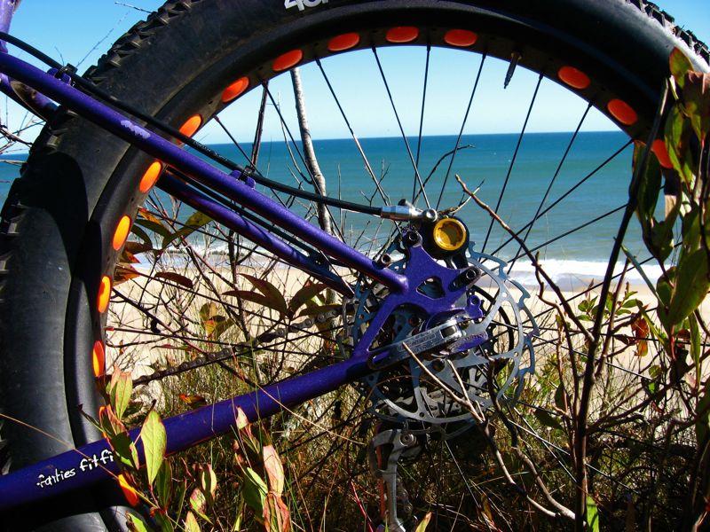Daily Fat-Bike Pic Thread - 2012-hb2.jpg