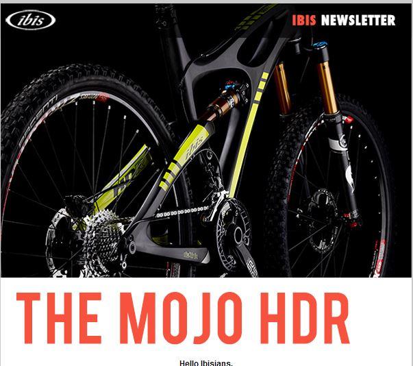 Mojo HDR-hdr.jpg