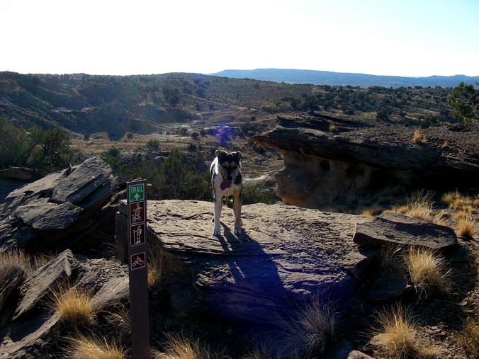 Rode the High Desert Trail today-hdt-01.jpg