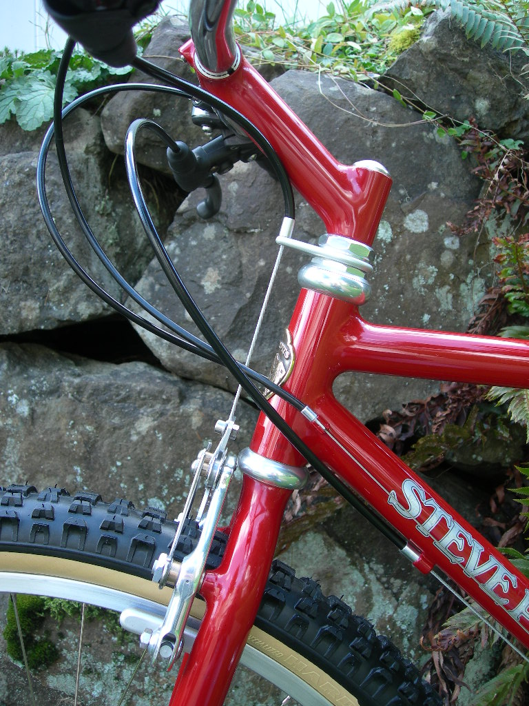 1988 Steve Potts-head-tube-03.jpg