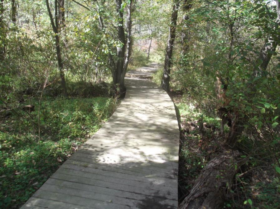 Friends & Fun in the Fall Season Reopen Lost Trails 9/23/12-hess-field-work-ride-9-23-12-029_900x900.jpg
