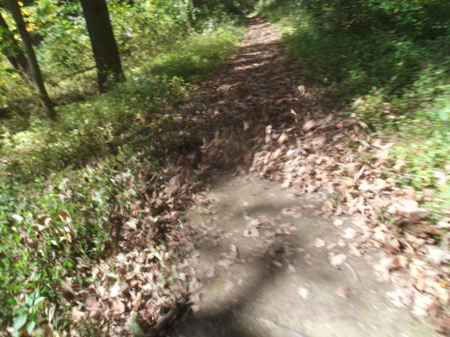 Friends & Fun in the Fall Season Reopen Lost Trails 9/23/12-hess-field-work-ride-9-23-12-040_900x900.jpg