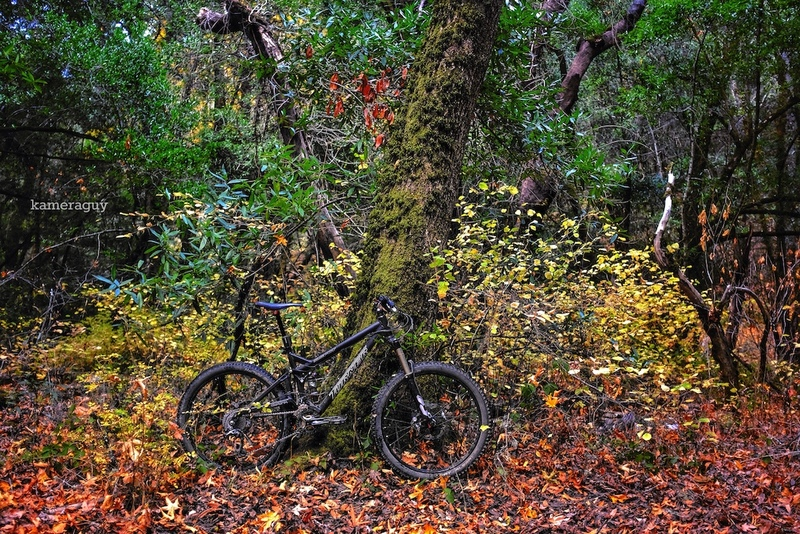 Fall Riding stoke?-hhs2.jpg