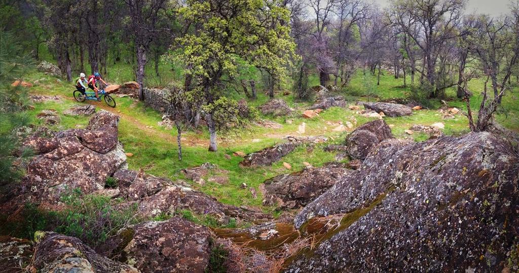 30 Miles of New Trails at Hidden Falls - We Need Your Help-hidden-falls-mountain-bike-1200x630.jpg