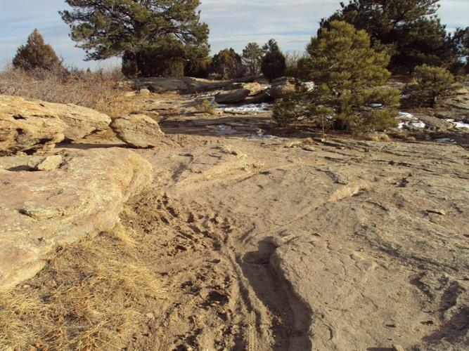 Hidden Mesa- pretty torn up-hidden-mesa-008.jpg