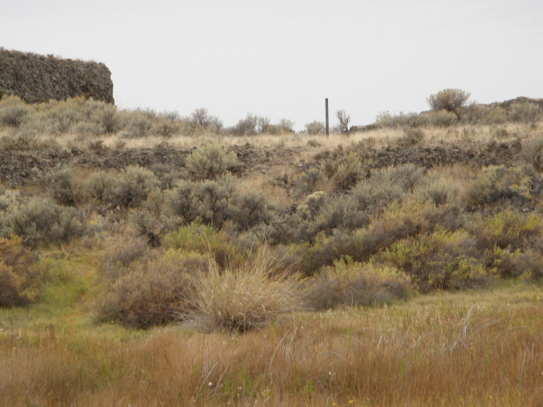 Moses Lake Area Trails-hidden_trail.jpg