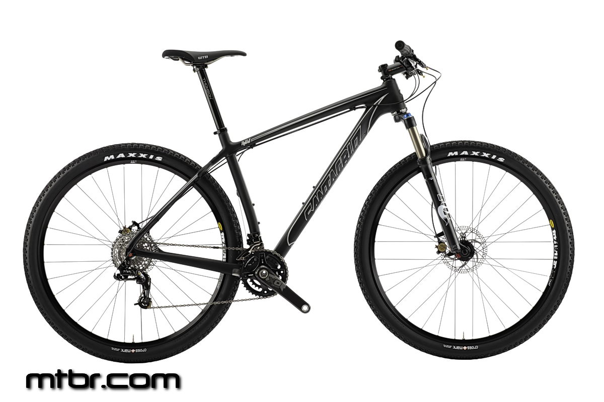 Santa Cruz Highball Gray