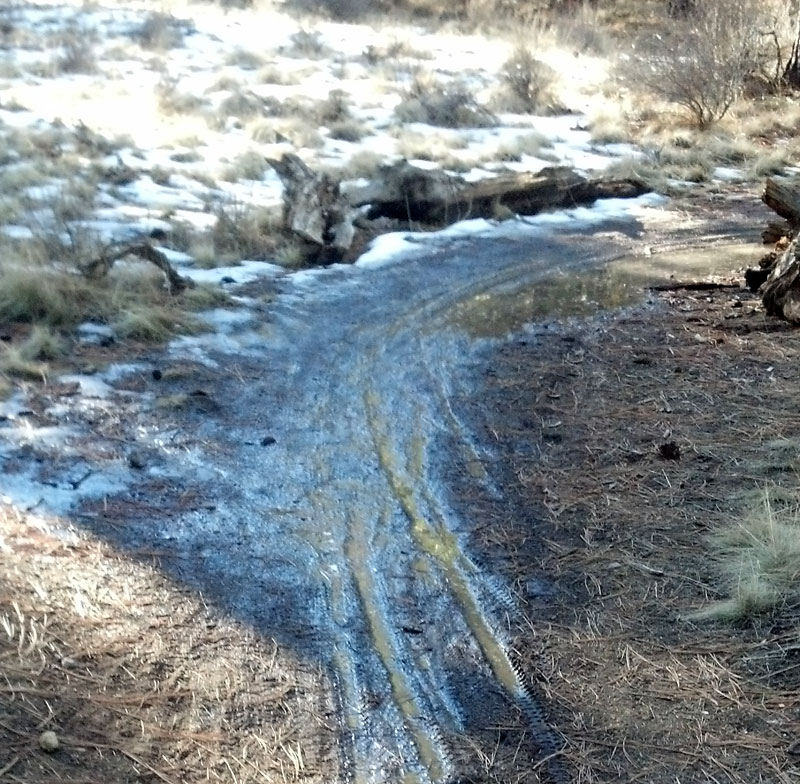 2014 - Bend Area Trail Conditions & Blow Down Thread-hike2.jpg