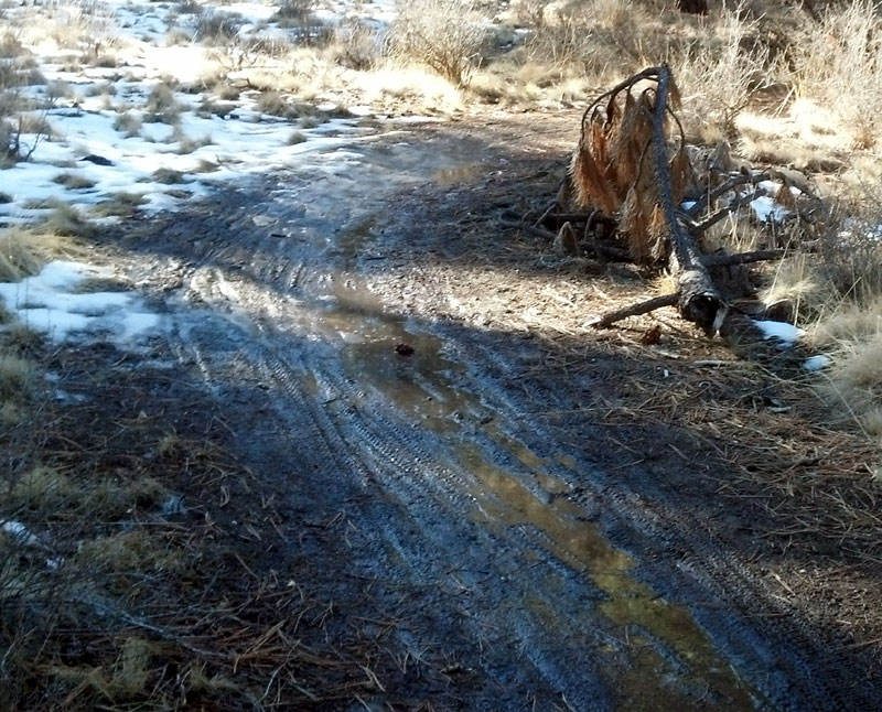 2014 - Bend Area Trail Conditions & Blow Down Thread-hike7.jpg