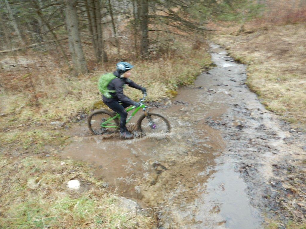 Local Trail Rides-hnjwdur.jpg