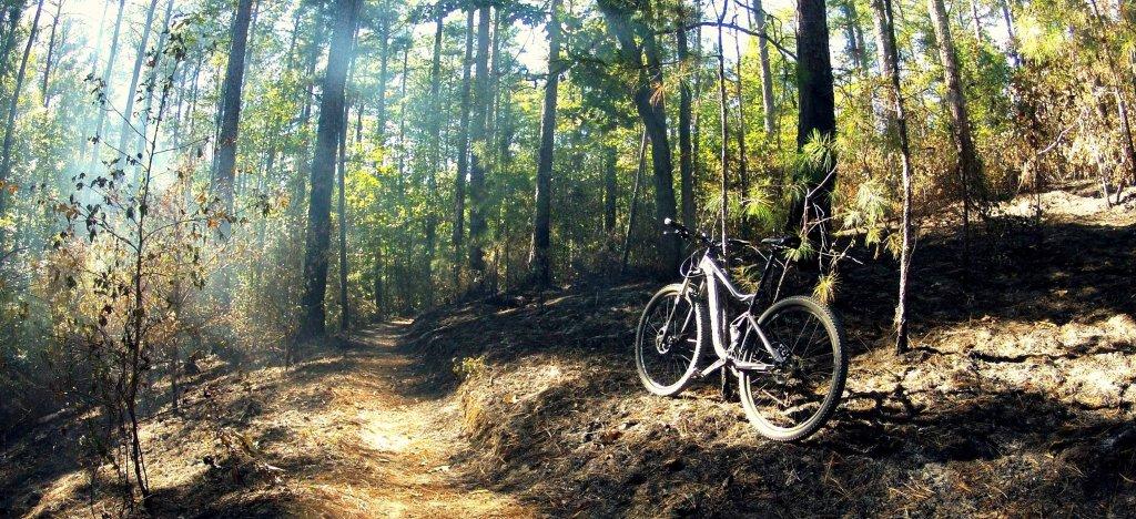 HobGoblinXO Forks Area Trail System! Last Weekend-hobgob.jpg