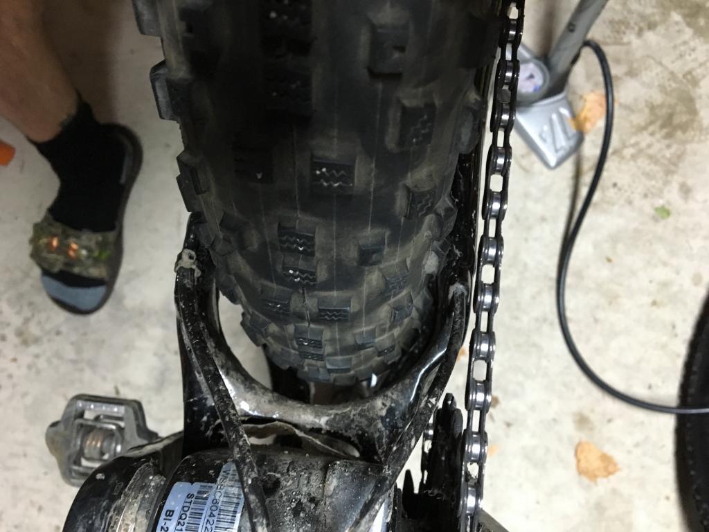 Stumpjumper 6Fattie w/ 3.8 Fat Tires?-hodag2.jpg