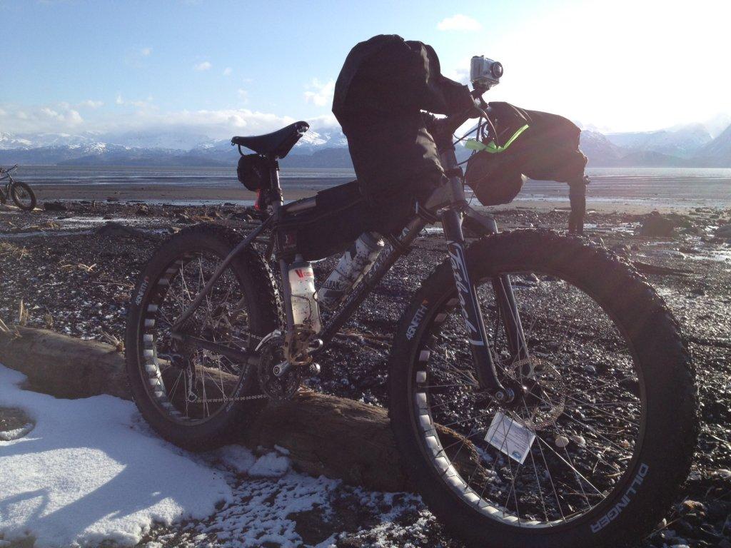 Racks (car) for fat bikes-homer-fatback.jpg