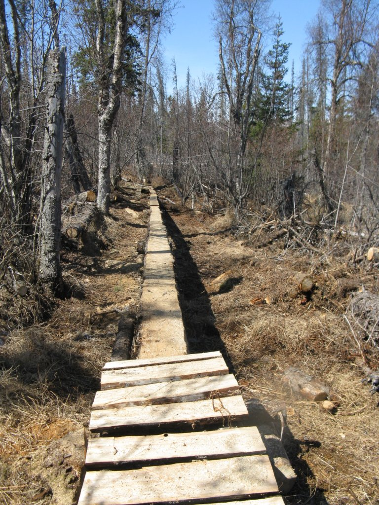 Show us your skinny builds-homer-trails-log-ride.jpg