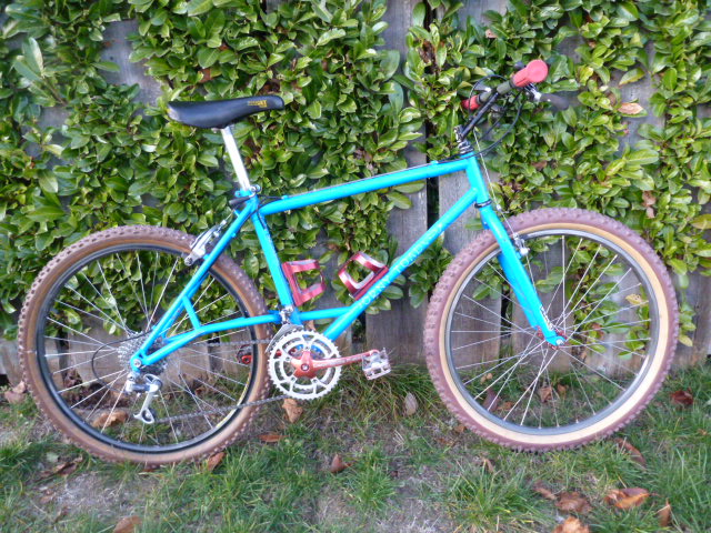 Vintage e-stay bikes-horny-toad-2-007.jpg